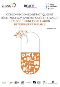 Antibiotiques: la consommation en France reste très supérieure à la moyenne européenne