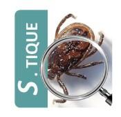 Maladie de Lyme : une application smartphone pour prévenir et lutter contre les tiques