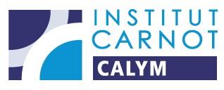 Bertrand Nadel, nouveau directeur de l'institut Carnot CALYM