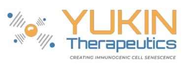 Yukin Therapeutics lève 3,3 M€ pour développer de nouveaux traitements contre le cancer