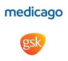 Medicago et GSK : des résultats intermédiaires de Phase 2 positifs pour le candidat-vaccin COVID-19 avec adjuvant