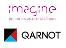 Maladies génétiques : Qarnot et l'Institut Imagine démarrent des collaborations pour optimiser la puissance de calcul et accélérer la recherche
